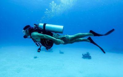 Sea Fun Divers